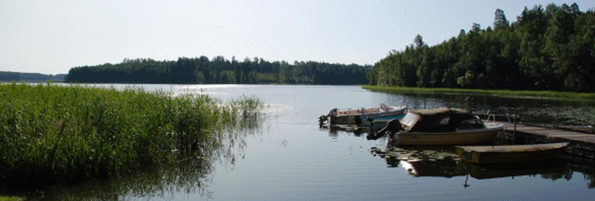 Välkommen till Kolsnaren-virens fiskevårdsområdesförening